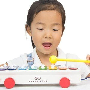 Fisher Price Classics Xylophone Pull Along Toy